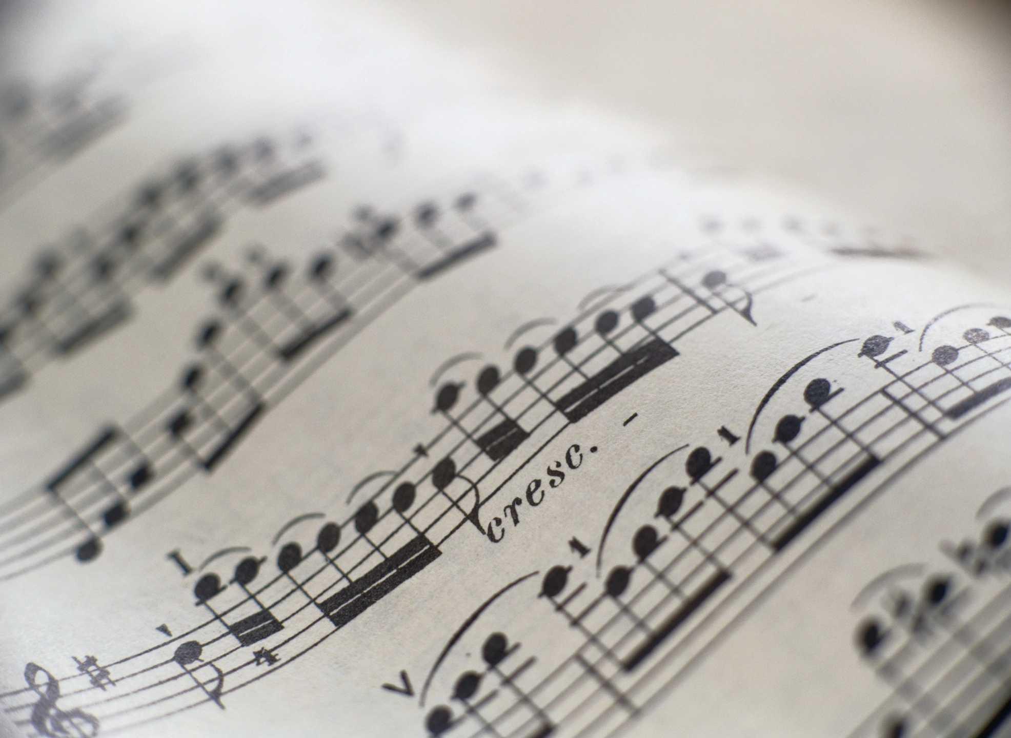 Concert Treble